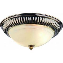 Потолочный светильник Arte Lamp 28 A3016PL-2AB
