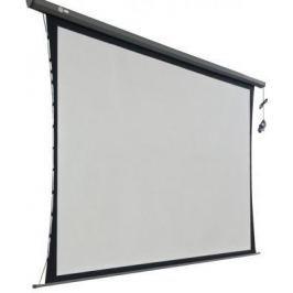 Экран настенный моторизированный Cactus Professional Tension Motoscreen CS-PSPMT-149X265 149 x 265 см