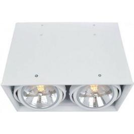 Потолочный светильник Arte Lamp Cardani A5936PL-2WH