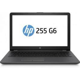 Ноутбук HP 255 G6 (1WY10EA)