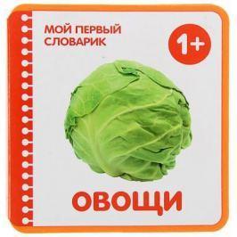 """Развивающие книжки Мозаика-Синтез Мой первый словарик """"Овощи"""""""
