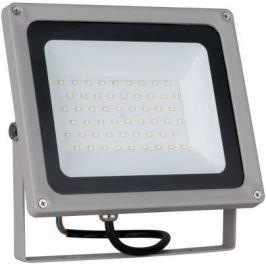 Прожектор светодиодный Elektrostandard 006 FL LED 50W 6500K 4690389101250