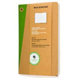 Блокнот Moleskine EVERNOTE SKQP422EVER XLarge 190х250 мм 120 листов