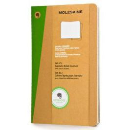 Блокнот Moleskine EVERNOTE SKQP416EVER Large 130х210 мм 80 листов