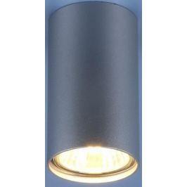 Потолочный светильник Elektrostandard 1081 5257 GU10 SL серебро 4690389104381