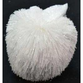 Елочные украшения Winter Wings Яблоко с иголками белый 11 см 1 шт полимер N180343