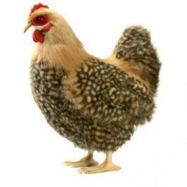 Мягкая игрушка курица Hansa 4588 искусственный мех синтепон бежевый 35 см 4588