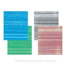 Тетрадь общая SPONSOR SN-96-4/5 96 листов клетка бумвинил в ассортименте