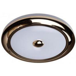 Потолочный светодиодный светильник с пультом ДУ MW-Light Энигма 688010101