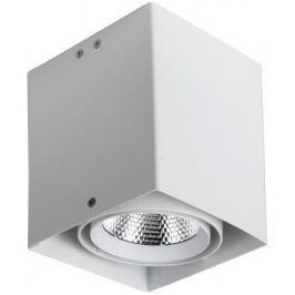 Потолочный светодиодный светильник Favourite Flashled 1986-1U