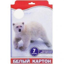 Набор белого картона Action! 4680291047678 A4 7 листов