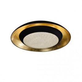 Потолочный светодиодный светильник Favourite Spiegel 2114-2C