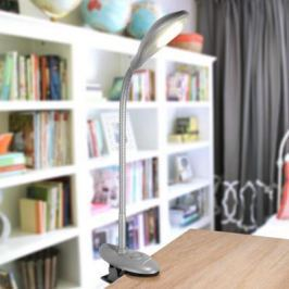 Настольная лампа Elektrostandard Captor TL90300 серебристый 4690389105258