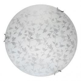 Настенно-потолочный светодиодный светильник Toplight Beatrice TL9281Y-00WH