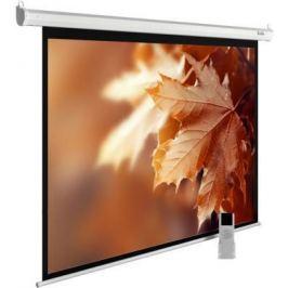 Экран настенно-потолочный Cactus CS-PSME-300X188-WT —
