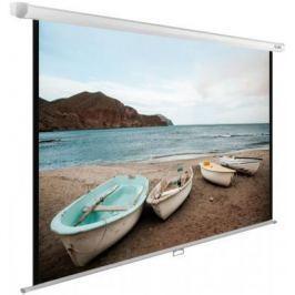 Экран настенно-потолочный Cactus CS-PSWE-220X138-WT —