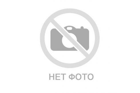 Лакомство TiTBiT для шиншиллы тарталетки с клюквой и тыквой Б2-M Шиншиллы