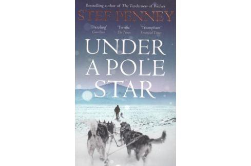 Penney S. Under a Pole Star Современная проза