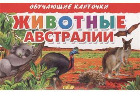 Глушкова Н. (худ.) Обучающие карточки. Животные Австралии Прочая обучающая литература