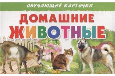 Глушкова Н. (худ.) Обучающие карточки. Домашние животные Прочая обучающая литература