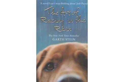 Stein G. The Art of Racing in the Rain. A Novel На английском языке