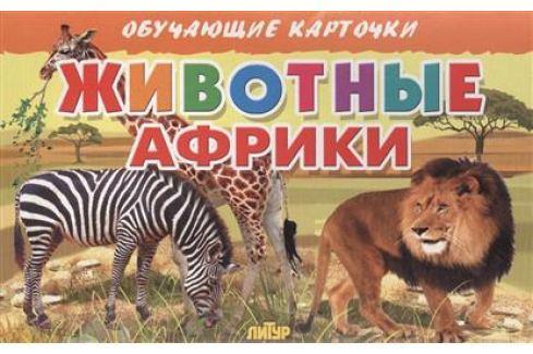 Глушкова Н. (худ.) Обучающие карточки. Животные Африки Прочая обучающая литература