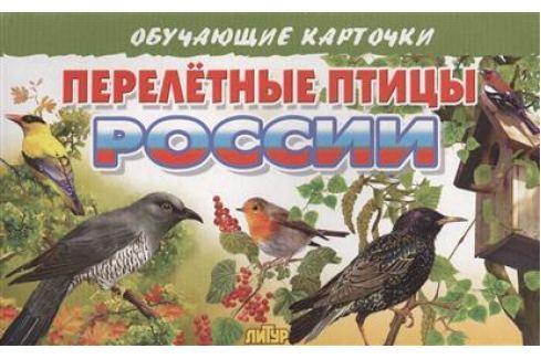 Глушкова Н. (худ.) Обучающие карточки. Перелетные птицы России Прочая обучающая литература
