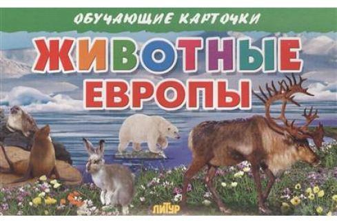 Глушкова Н. (худ.) Обучающие карточки. Животные Европы Прочая обучающая литература