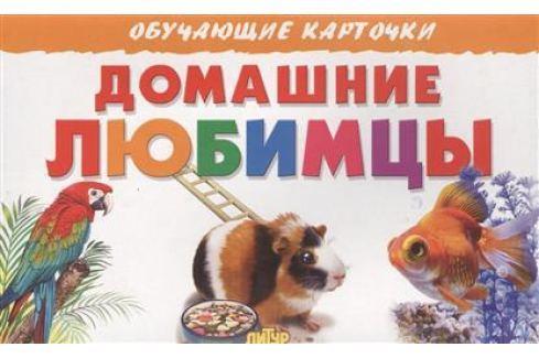Богуславская М. (худ.) Обучающие карточки. Домашние любимцы Прочая обучающая литература