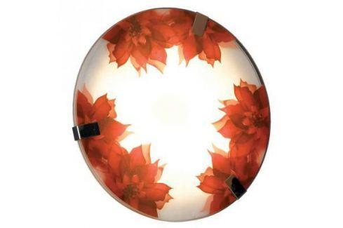 Настенный светильник Lussole Lgo LSN-5252-01 Люстры подвесные