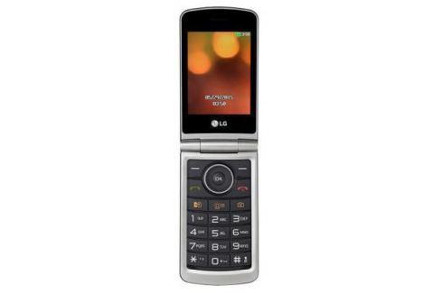 Мобильный телефон LG G360 титан (LGG360.ACISTN) Телефоны